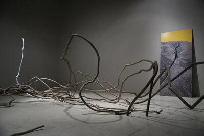 John Ruppert, 'Bittersweet', 2017