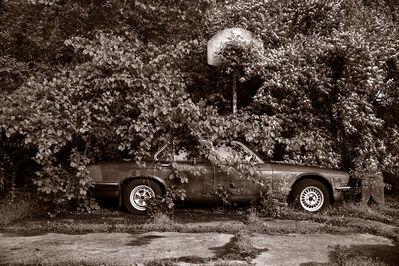Gary Beeber, 'Abandoned Jaguar', 2018