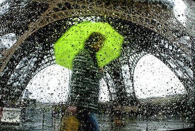 Christophe Jacrot, 'Graines d'eau', 2010