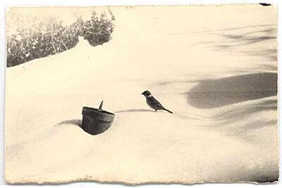 """Yamamoto Masao, 'Untitled #77, from """"A Box of Ku""""', 1995"""