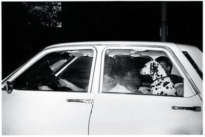 Maria Sewcz, 'Dalmatian', 1986–7