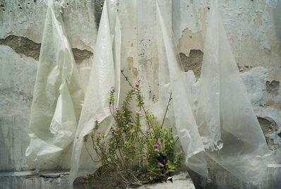 Kheng-Li Wee, 'Translucent Sheeting', 2011