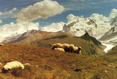 Wolfgang Tillmans, 'Zermatt', 1991