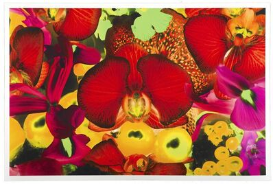 Marc Quinn, 'At the Far Edges of the Universe 2', 2010
