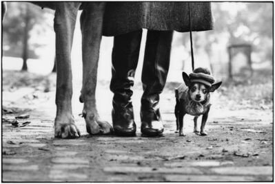 Elliott Erwitt, 'New York City, 1974 (dog legs)', 1974