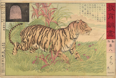 Unknown, 'Educational Pictorial Instructions: Animals, no. 8, Tiger', ca. 1886