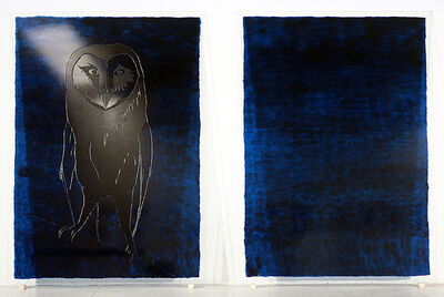 Jan Fabre, 'Zonder Titel (Untitled)', 1988