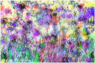 Jane Sklar, 'Tulips', 2018