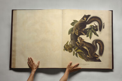Esther Shalev-Gerz, 'The Open Page - The Viviparous Quadrupeds of North America', 2009