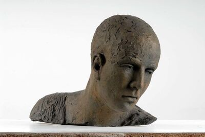 Hanneke Beaumont, 'Bronze #83 ', 2007