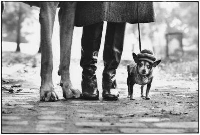 Elliott Erwitt, 'New York City (Dog Legs)', 1974