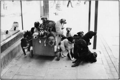 Elliott Erwitt, 'London, England, 1974', 1974