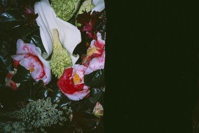 Nobuyoshi Araki, 'Love on the Left Eye', 2014