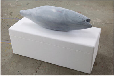 Jürgen Drescher, 'Fish in Box', 2015
