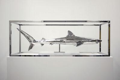 Christopher Schulz, 'Captivity'