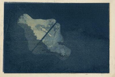 Aurore de La Morinerie, 'Plankton 2', 2015