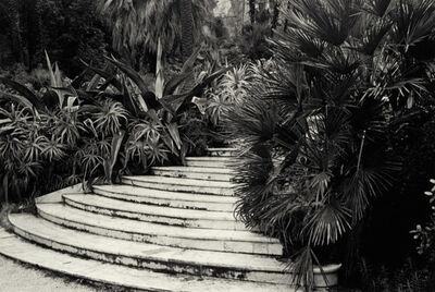 André Carrara, 'L'escalier', 1999