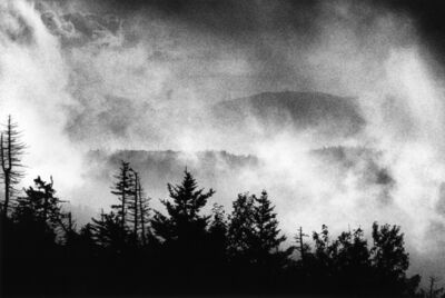 Renato D'Agostin, 'Great Smoky Mountains, Tennessee', 2015
