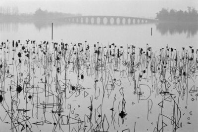 René Burri, 'CHINA. Beijing. Former Summer Palace. Dead lotus flowers on the Kunming Lake.', 1964