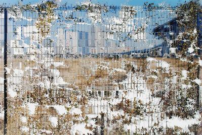 Ikeda Shu, 'Focus', 2014