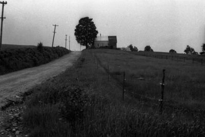 William Harting, 'Fern Street', 1973