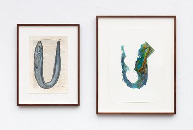 Anri Sala, 'Untitled (Congrus authoris/California)', 2019