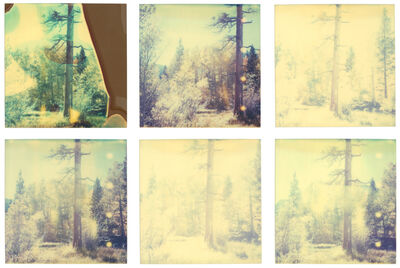 Stefanie Schneider, 'In The Range Of Light III - 6 pieces, analog, based on a Polaroid', 2003