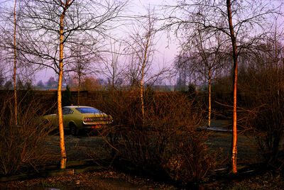 Harry Gruyaert, 'Province of Limburg, Belgium', 1988