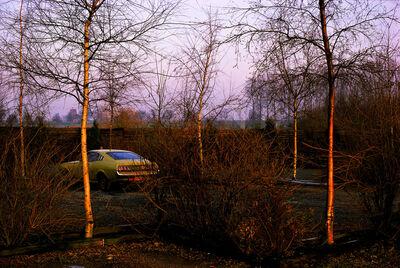 Harry Gruyaert, 'Province of Limburg, Belgium', 1988