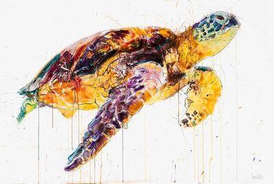 Dave White, 'XXL Sea Turtle', 2019