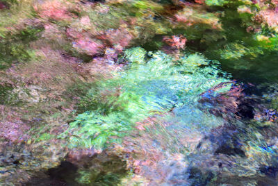Larry Garmezy, 'Thoughts of Giverny #2a - Abstract / impressionist water photography, waterscape, natural abstraction, in green, pink, and blue', 2018