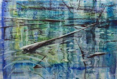 Matthias Meyer, 'Taylor Pond 2',  2018