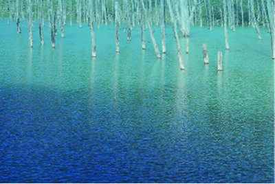 KAZZ MORISHITA, 'Blue Pond', 2016