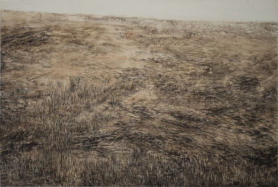 "Mary Ann Peters, '""field""', 2019"