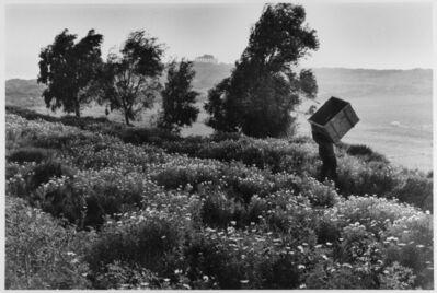 Leonard Freed, 'Man carries empty box up hill, Sicily, Italy ', 1975