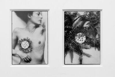 Hannah Wilke, 'Breastplate', 1981