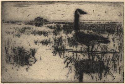 Frank Weston Benson, 'Lone Goose.', 1915