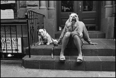 Elliott Erwitt, 'New York City, USA. ', 2000