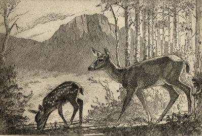 Waldo Park Midgley, 'Doe and Fawn', 1950