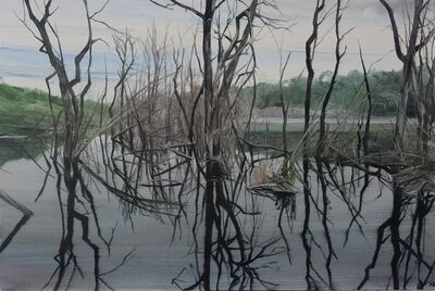 Nicholas Blowers, 'Savage Pond X Study', 2018