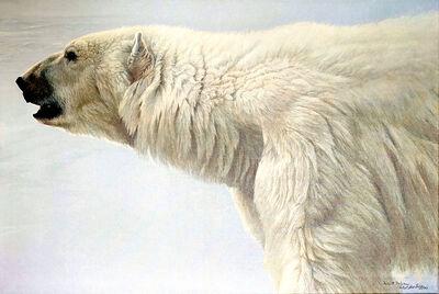 Robert Bateman, 'Polar Bear Profile', 1982