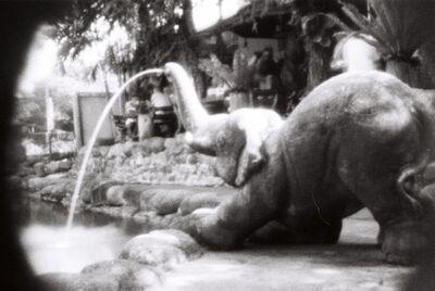 Brigitte Spiegeler, 'Undeniably an elephant'