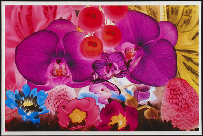 Marc Quinn, 'At the far Edge of the Universe No. 4', 2010
