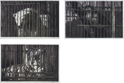 Robert Longo, 'Study of Polar Bear (Bresson's au hasard Balthazar) #1; Study of Tiger (Bresson's au hasard Balthazar) #2; Study of Monkey (Bresson's au hasard Balthazar) #3', 2010