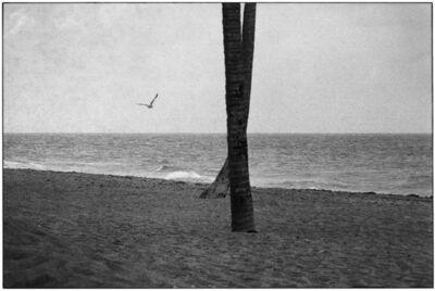 Elliott Erwitt, 'Daytona Beach, Florida', 1975