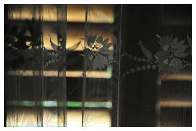Mircea Stanescu, 'MORNING TRAP 5', 2012