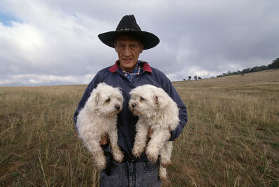 Cary Wolinsky, 'Australian Shepherd with Dogs', 1999