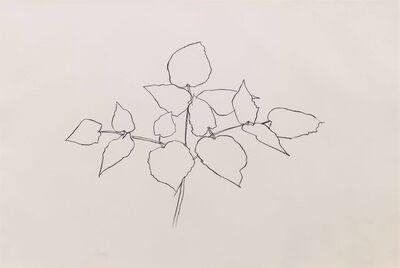 Ellsworth Kelly, 'Woodland Plant', 1979