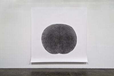Tony Orrico, 'Penwald: 9: lateral bends lost', 2010