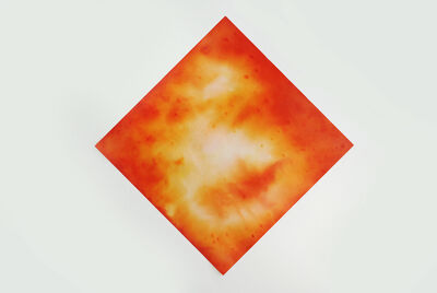 Ben Charles Weiner, 'Orange Flowers III', 2015